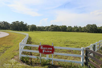 Dunnellon Residential Lots & Land For Sale: SW 106 Lane Road #4