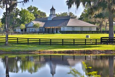 Williston Farm For Sale: 13521 W Hwy 318