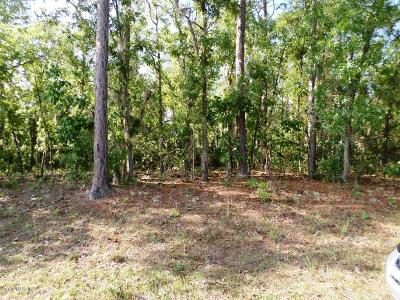 Citrus County Residential Lots & Land For Sale: 586 W Hummingbird Drive