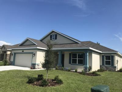 Ocala Single Family Home For Sale: 1025 NW 45 Place