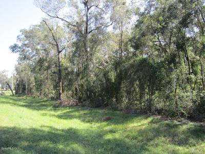 Citrus County Residential Lots & Land For Sale: 9319 S Florida Avenue Avenue