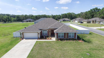 Belleview Single Family Home For Sale: 3786 SE 99th Street