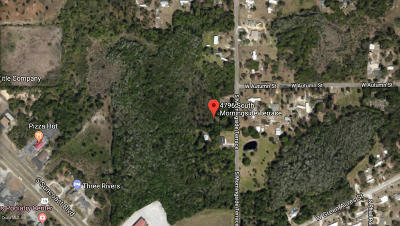Citrus County Residential Lots & Land For Sale: 4796 S Morningside Terrace