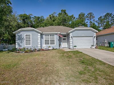 Lady Lake Single Family Home For Sale: 421 Cierra Oaks Circle