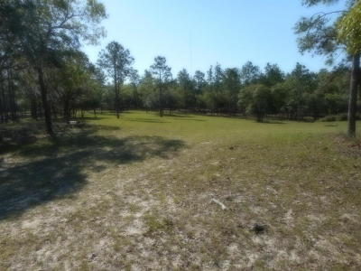 Dunnellon Residential Lots & Land For Sale: 16900 County Road 328