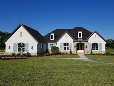 Ocala FL Single Family Home For Sale: $819,000