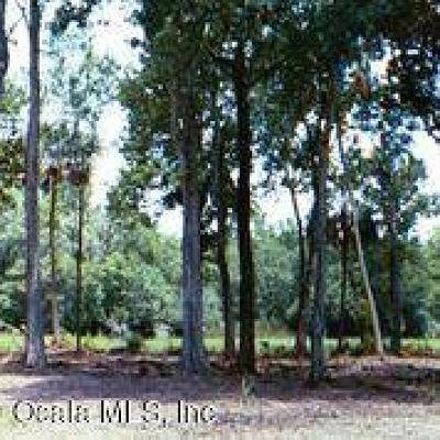 Dunnellon Residential Lots & Land For Sale: 9069 SW 190th Avenue Road