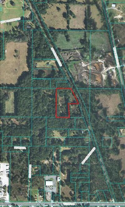 Ocala Residential Lots & Land For Sale: NW 38th Avenue Road