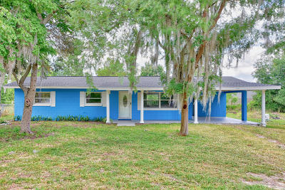 Belleview Single Family Home For Sale: 12107 SE 89th Ter Terrace