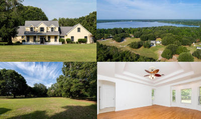 Ocklawaha Single Family Home For Sale: 3700 SE 183rd Avenue Road