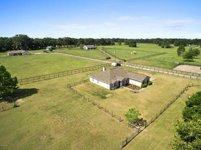 Citra Farm For Sale: 1190 E Hwy 316