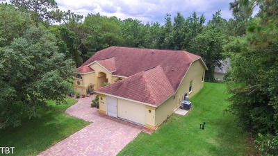 Dunnellon Single Family Home For Sale: 19580 SW 93rd Lane Road