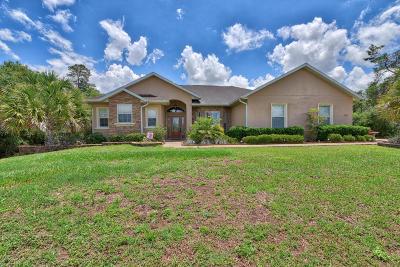 Ocala Single Family Home For Sale: 10471 SW 38th Avenue