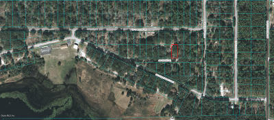 Dunnellon Residential Lots & Land For Sale: Lot 29 SW Zenith Dr.