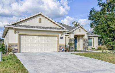 Ocala Single Family Home For Sale: 1031 NW 45th Place
