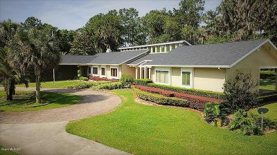 Ocala FL Single Family Home For Sale: $849,900
