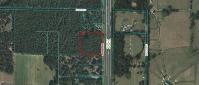 Ocala Residential Lots & Land For Sale: SW 38th Avenue Avenue