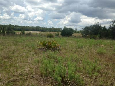 Dunnellon Residential Lots & Land For Sale: SW 66 Loop