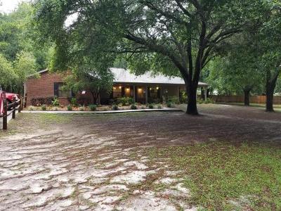 Ocala Single Family Home For Sale: 2385 SE 62nd Street