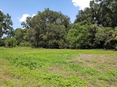 Ocala Residential Lots & Land For Sale: 1899 NW 100th Street