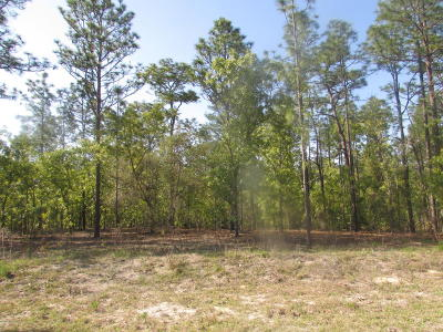 Dunnellon FL Residential Lots & Land For Sale: $8,500