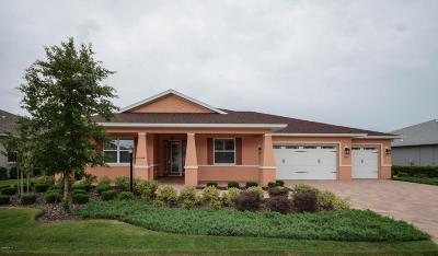 Ocala Single Family Home Pending: 8674 SW 94th Circle