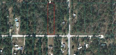 Dunnellon Residential Lots & Land For Sale: SW 47th Street