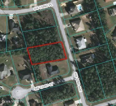 Ocala Residential Lots & Land For Sale: SW 42nd Avenue