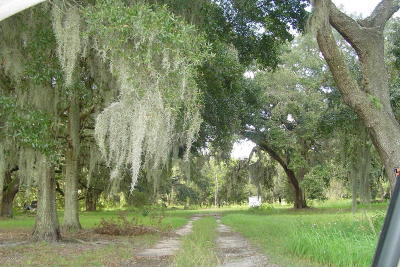 Dunnellon FL Residential Lots & Land For Sale: $279,000