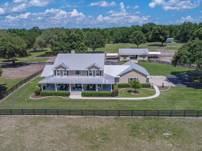 Lady Lake Single Family Home For Sale: 40436 Old Church Road