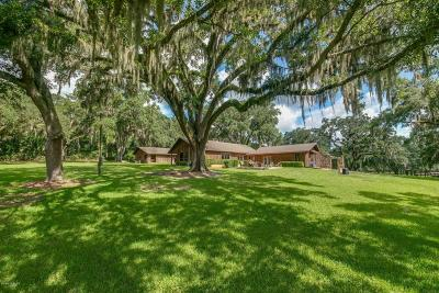 Ocala Farm For Sale: 8219 NW Hwy 225a