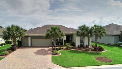 Ocala Single Family Home For Sale: 7461 SW 97 Ter Road