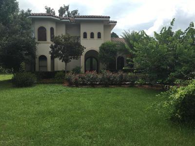 Ocala Single Family Home For Sale: 8170 S Magnolia Avenue
