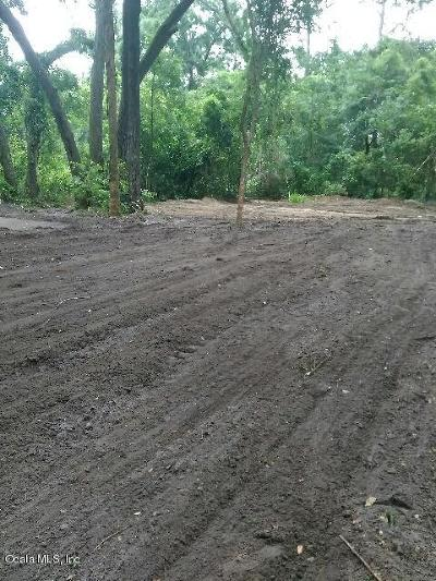 Ocala Residential Lots & Land For Sale: 3865 SE 93rd Place