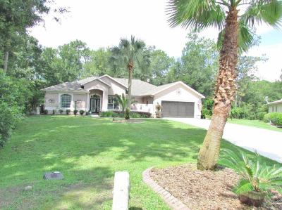 Dunnellon Single Family Home For Sale: 19928 SW 93rd Lane