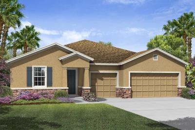 Ocala Single Family Home For Sale: 3602 SE 47th Terrace
