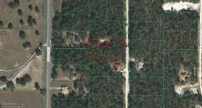 Ocala Residential Lots & Land For Sale: SW 138 Terrace