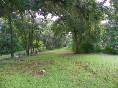 Dunnellon Residential Lots & Land For Sale: 11869 SW Highway 484