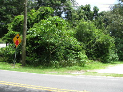 Ocala Residential Lots & Land For Sale: 1862 NE 24 Street