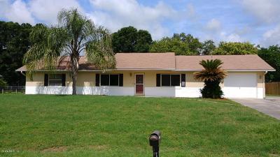 Ocala Single Family Home For Sale: 6028 NE 26th Avenue
