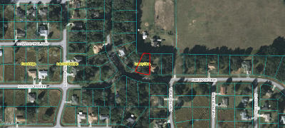 Ocala Residential Lots & Land For Sale: Pine Trace Course