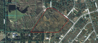 Ocala Residential Lots & Land For Sale: Juniper Loop Terrace