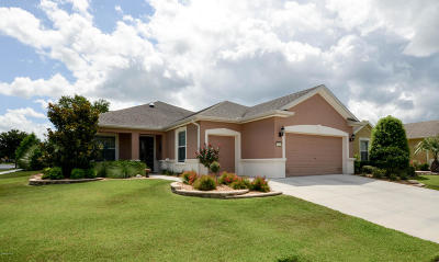 Ocala Single Family Home For Sale: 7361 SW 100th Court