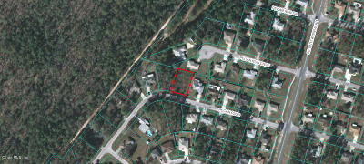 Residential Lots & Land For Sale: Pecan Pass