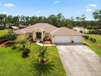 Ocala Single Family Home For Sale: 10928 SW 39th Court
