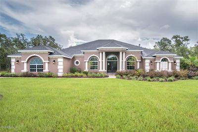 Citrus County Single Family Home For Sale: 6316 W Pine Ridge Boulevard