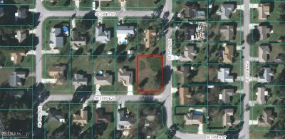 Belleview Residential Lots & Land For Sale: 4411 SE 108th Lane