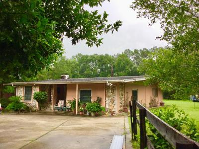 Dunnellon Single Family Home For Sale: 18300 SW 31st Street
