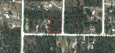 Ocala Residential Lots & Land For Sale: SW 168th Avenue