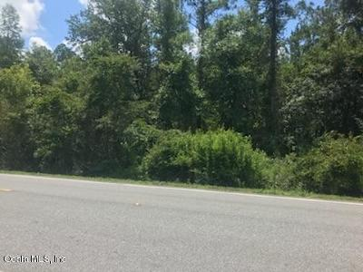 Citra Residential Lots & Land For Sale: 8799 E Hwy 318